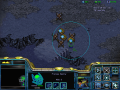 Starcraft Sor 3.01 //Bug fix//