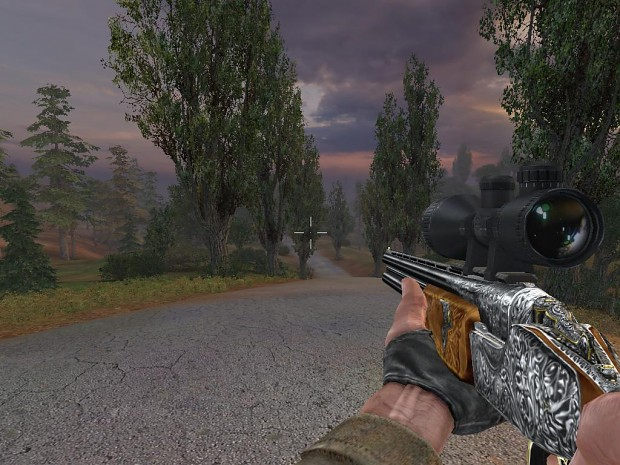 S.T.A.L.K.E.R. Toz34 with Scope
