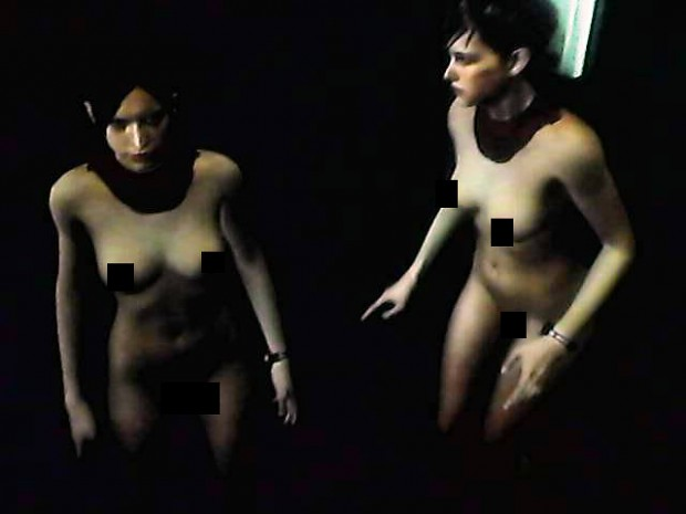 [18+ nudity warning] RE games nude collections V2