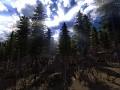 Leadwerks Game Engine 3.7 Vegetation System