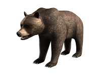 Bear from New Shooting Simulator