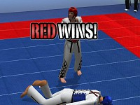 Tae Kwon Do - World Champion