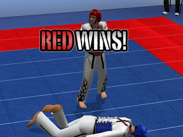Tae Kwon Do - World Champion