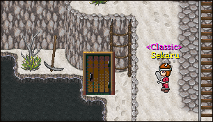 Avian Classic Screenshots & Features