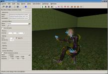 Rig Editor Simulation