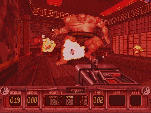 Regular version - in-game shot