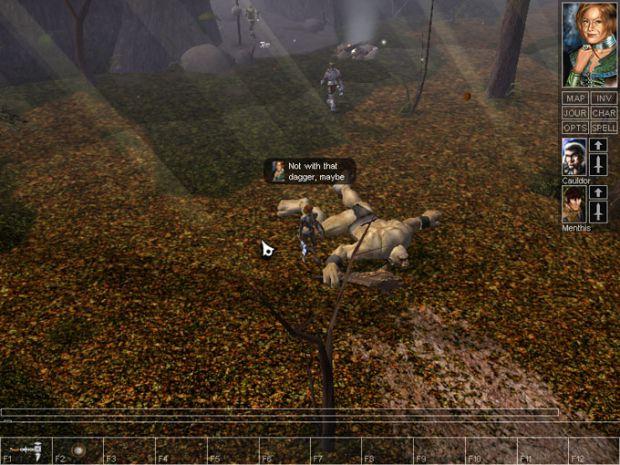 Vanilla NWN screenshot #14