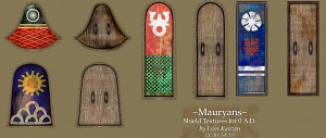 Mauryan shield textures