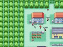 Town Gathering