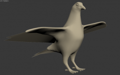 Pigeon High and Low poly mesh