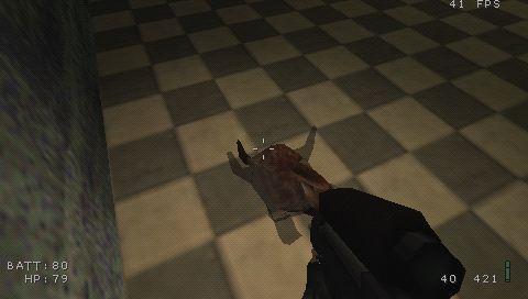 PSP shadows
