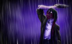 Ragdoll In The Rain