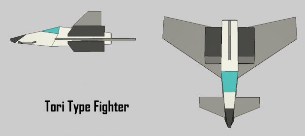 Tori Type Fighter