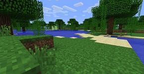 Swamp Biome.
