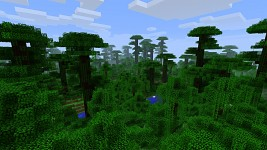 Green jungle is green