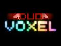 DuoVoxel