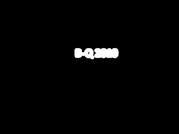 B-Q 2010