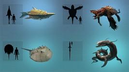 Fauna Concepts
