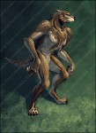 Werewolf Male