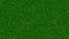 grass..