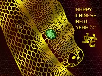 TCW 2013 Year of the Snake.