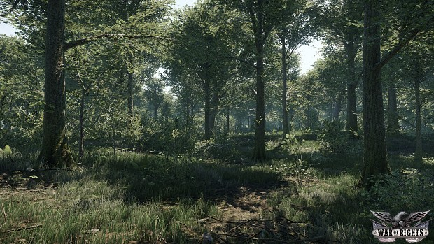 Updated look of the forests