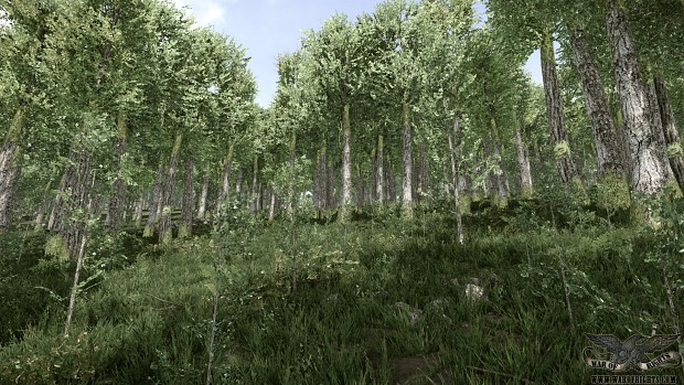 Woods at Burnside Bridge WIP 3