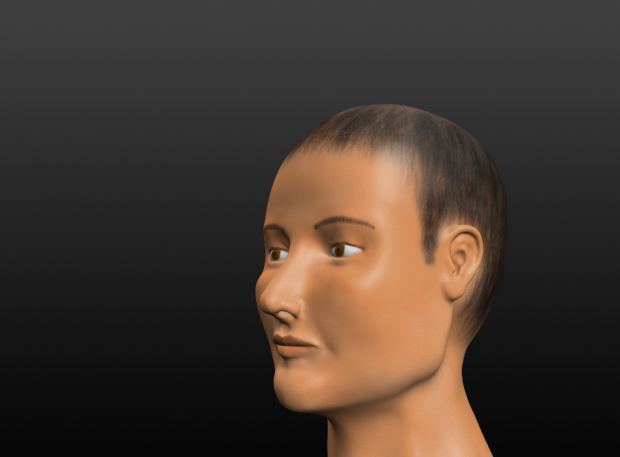 Character Face. WIP
