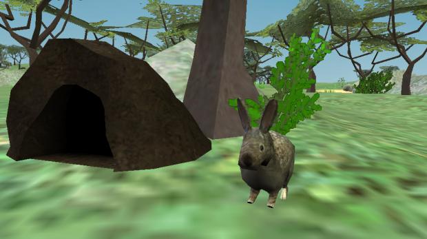 Rabbit & Den