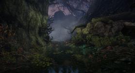 Darkmist Forest