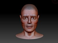 head topology 1 - Zbrush