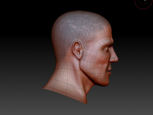 head topology 2 - Zbrush