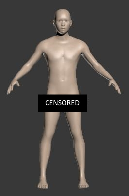 Male Player Model