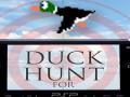 Duck Hunt PSP