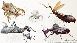 Bug Concepts