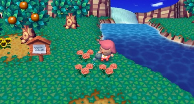 how to play animal crossing city folk on pc