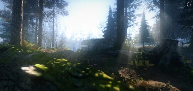 """""""Palladium Forest"""""""