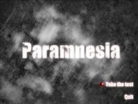 Paramnesia
