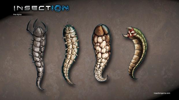 Bug Larvae