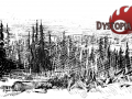 Dystopia 2D