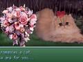 Pokecats 2