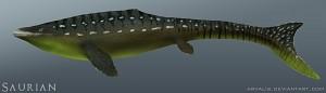 Mosasaurus 003