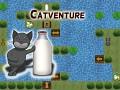 Catventure puzzle