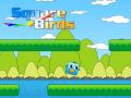 Squarebirds