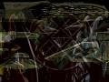 Ornithon Species Video