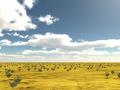 Desert Wandering Simulator 2015