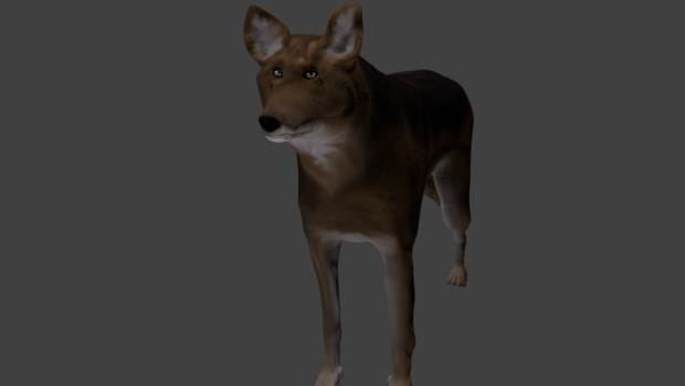Red wolf model (low)