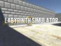 Labyrinth Simulator