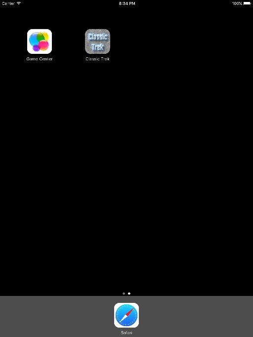 iPad Window