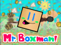 Mr. Boxman